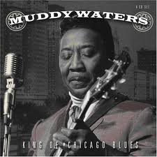 a116 muddy waters.jpg